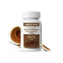 natur-tanya-szerves-ganoderma-pecsetviaszgomba-923