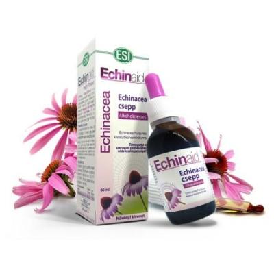 natur-tanya-esi-alkoholmentes-echinacea-csepp-immunvedo-kulso-belso-gyulladasok-felso-leguti-hugyuti-fertozesek-50-ml-971