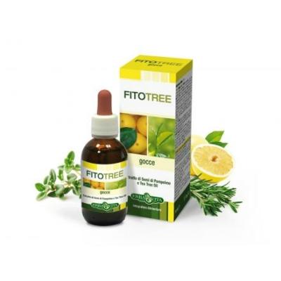 atur-tanya-erbavita-fitotree-bakteriumolo-fertotlenito-grapefruit-teafa-rozmaring-es-kakukkfu-olaj-30-ml-966