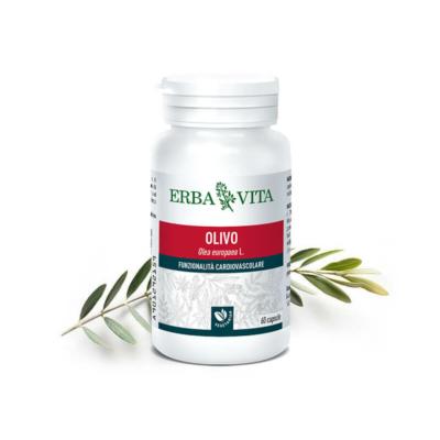natur-tanya-erbavita-mikronizalt-olajfalevel-kapszula-3-szabadalommal-vedett-immunrendszer-allergia-asztma-vernyomas-60-db